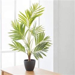 Alex Liddy Faux Palm Tree 80cm