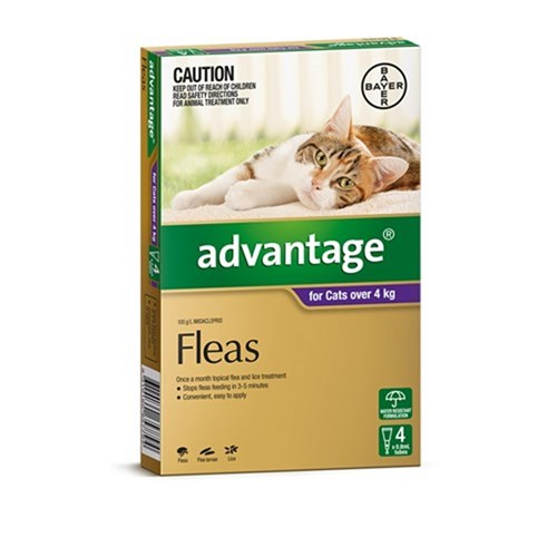 Advantage Flea Treatment for Cats over 4kg Pack of 4