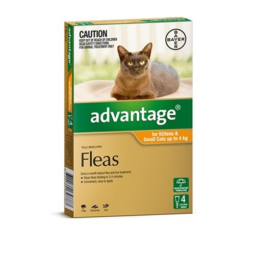 Advantage Flea Treatment for Small Cats up to 4kg Pack of 4