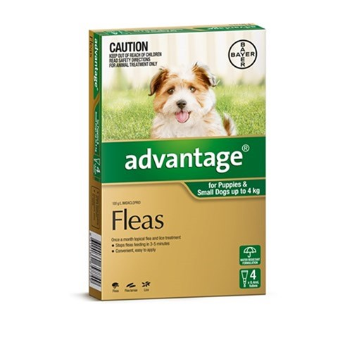 Advantage Flea Treatment for Small Dogs 0-4kg Pack of 4
