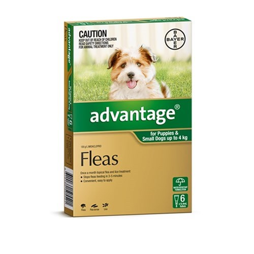 Advantage Flea Treatment for Small Dogs 0-4kg Pack of 6