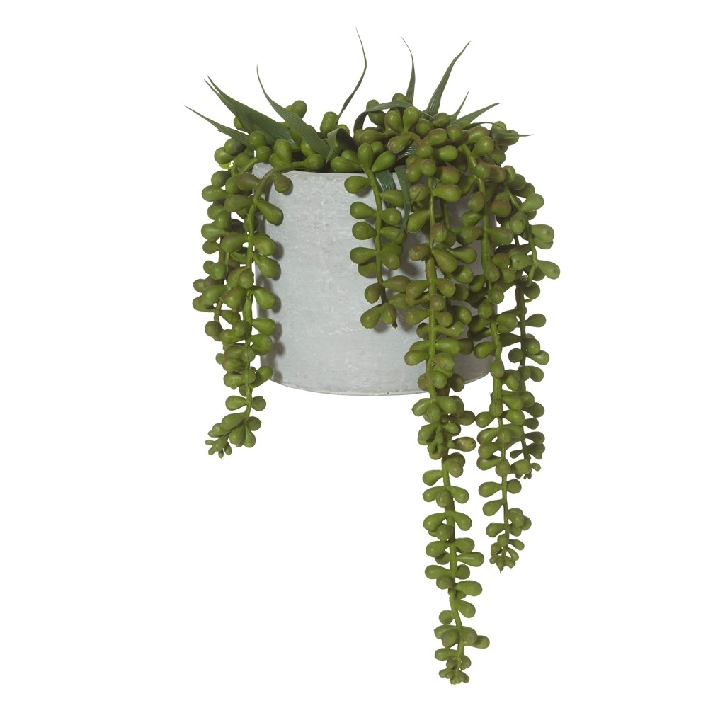 Rogue String of Pearls Cement Pot 15 x 27cm