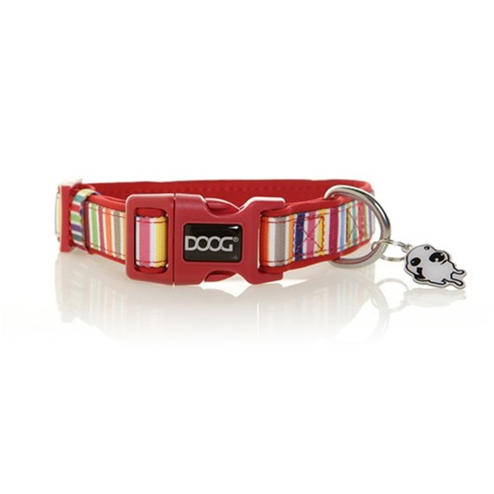 Doog Scooby Collar Candy Striped Large