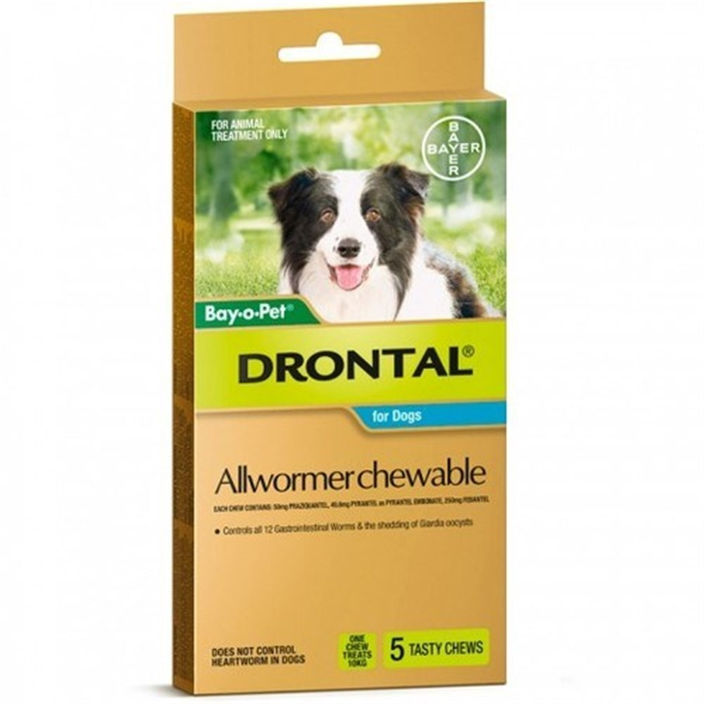 Drontal Allwormer Chewables for Medium Dogs up to 10kg 5 Pack