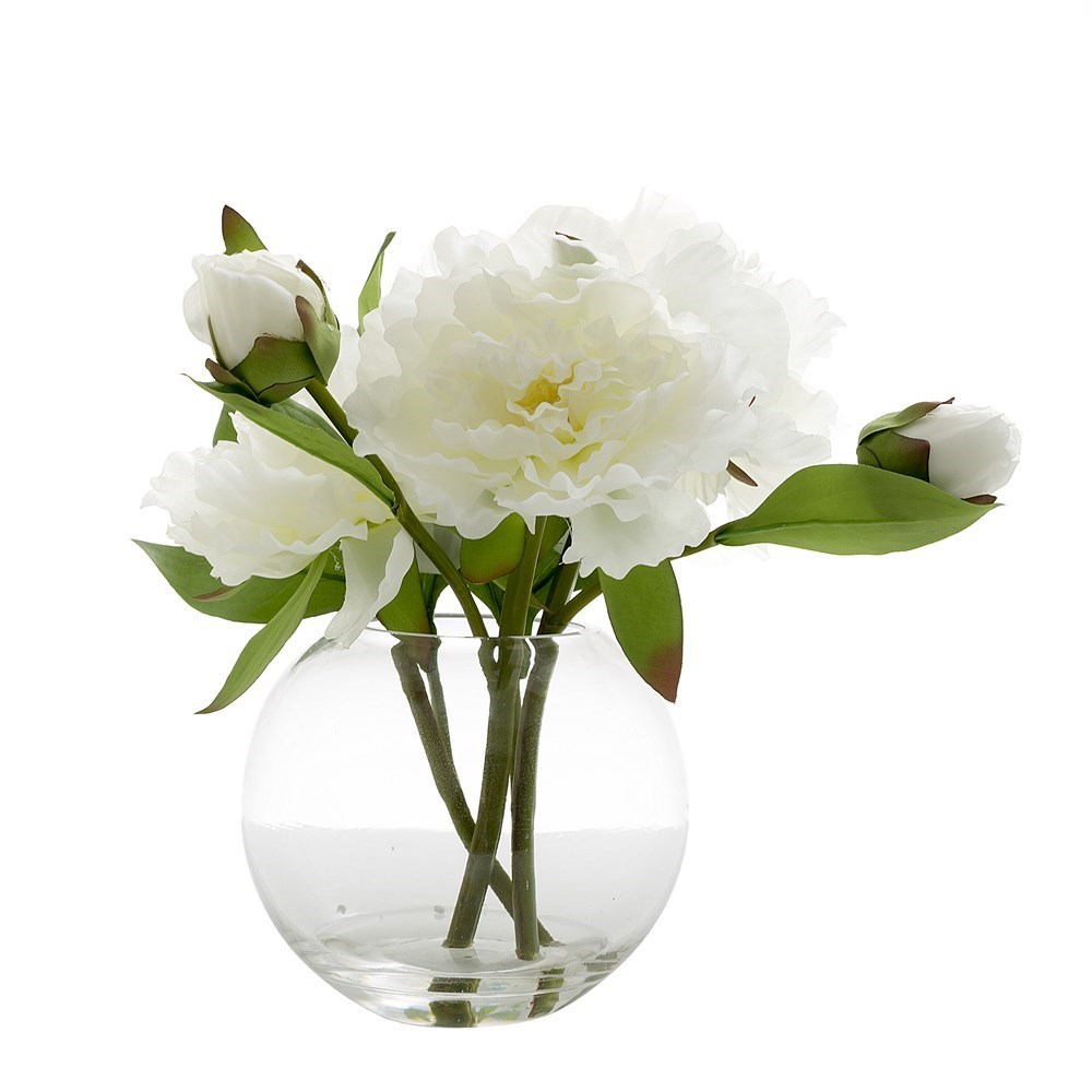 Florabelle Living Peony in Water Bowl White 25cm