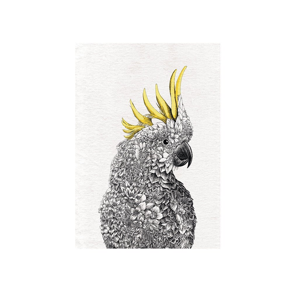 Maxwell & Williams Marini Ferlazzo Birds Cockatoo Tea Towel 50 x 70cm