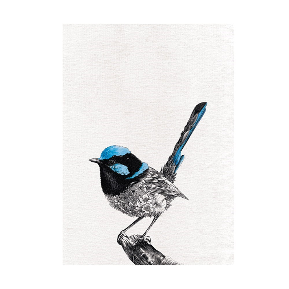 Maxwell & Williams Marini Ferlazzo Birds Cotton Tea Towel 50 x 70cm Superb Fry-Wren