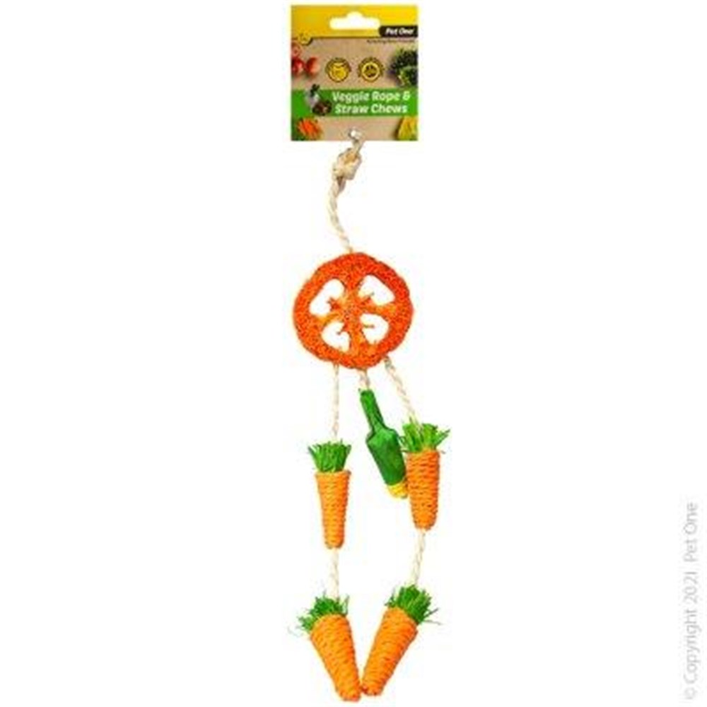 Pet One Small Animal Veggie Rope And Straw Chew Hanging Dreamcatcher