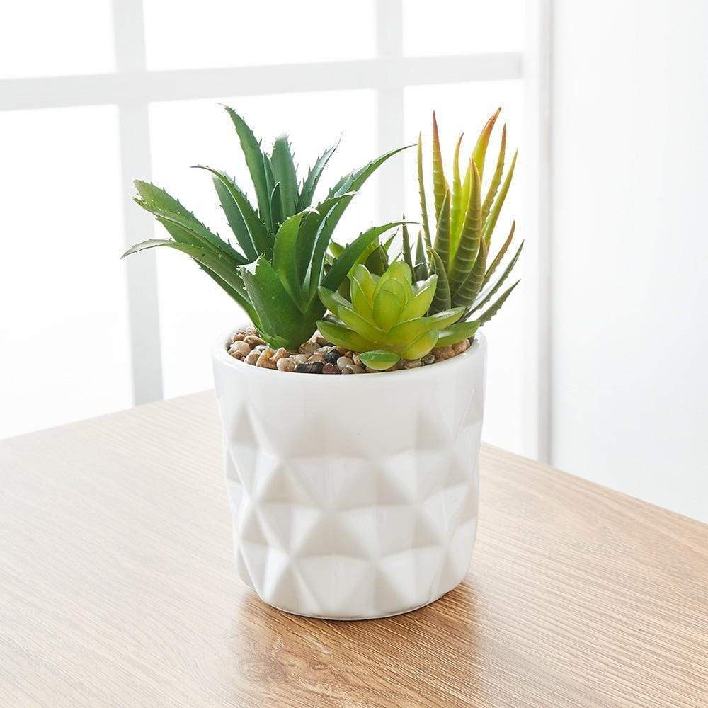 MyHouse Potted Faux Succulent Bunch