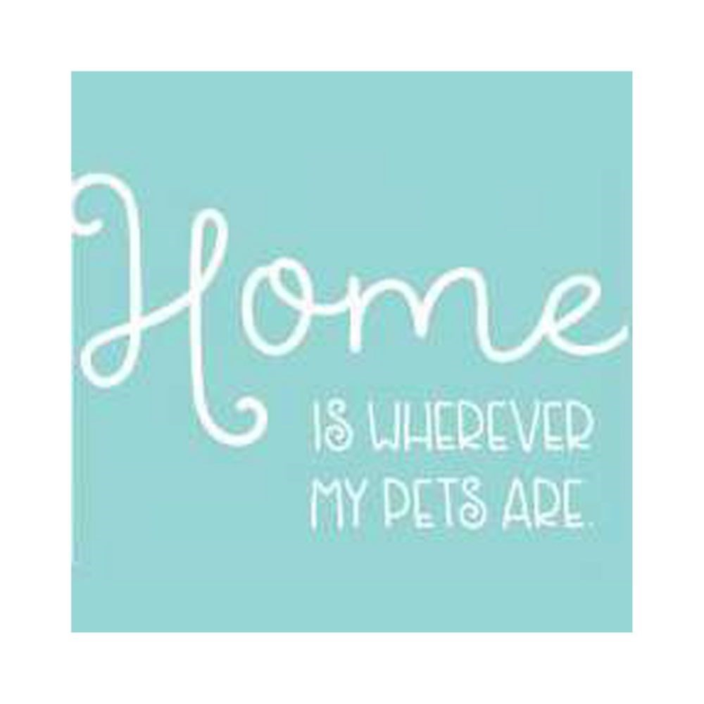 Thirstystone Home Is Where My Pets Are Coaster