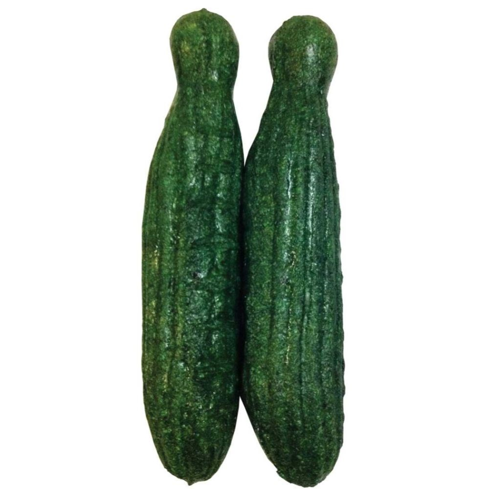 Veggie Patch Small Animal Nibblers Cucumbers 2 Pack