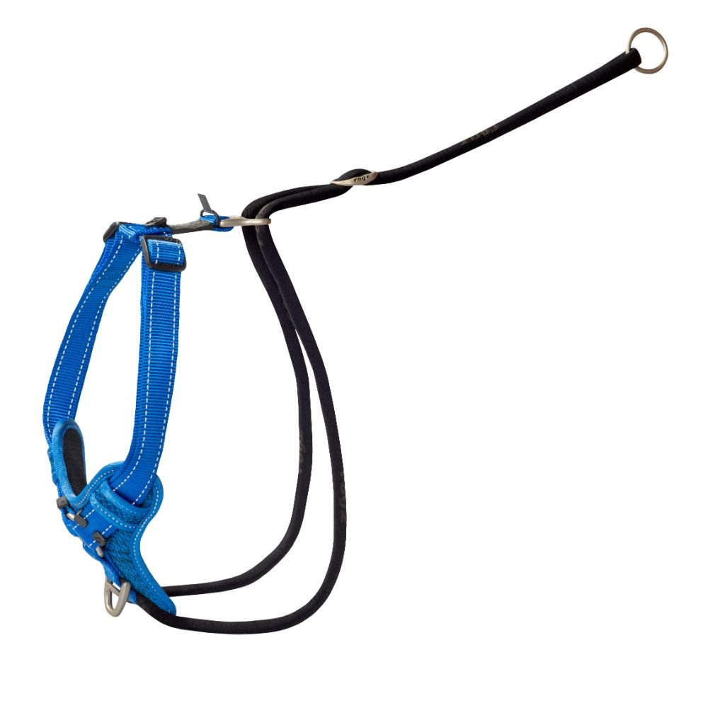 Rogz Control Stop Pull Dog Training Harness Blue Extra Large