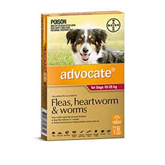 Dog Flea Tick & Worming