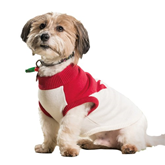 Dog Jumpers & Apparel